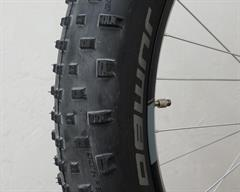 Closeup of Schwalbe Jumbo Jim